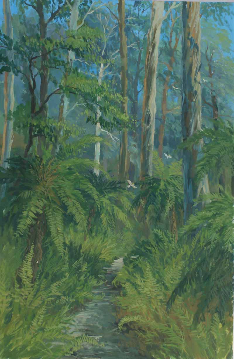 Tree ferns and the forest,Dandenong